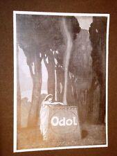 Pubblicità d'Epoca per Collezionisti del 1905 Dentifricio Odol Tema #2
