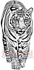 Deep Red Stamps Bengal Tiger Rubber Cling Stamp