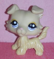 authentic LPS dog 1194 COLLEY COLLIE littlest petshop chien DOGS hasbro