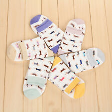 Dachshund Sausage Dog Weiner Doxie Ladies Socks Pet Lover Gift Animals Cute