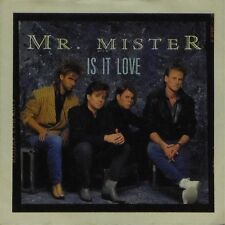 """MR MISTER 'IS IT LOVE' UK PICTURE SLEEVE 7"""" SINGLE"""