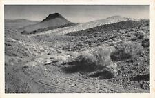 VTG Pre-1952 Unused Bundy POSTCARD DESERT SCENE SAGEBRUSH NEVADA NV / B9