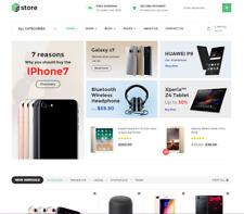 Ecommerce Wordpress Website with Demo Store