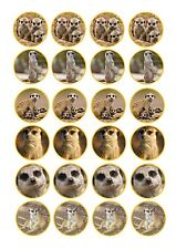 24 Edible cake toppers wafer rice paper Meerkat mixed images novelty birthday