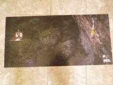 Petzl Rock Climbing Poster Michael Fusilier New