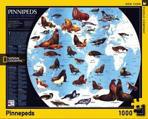 National Geographic Pinnipeds 1000 Piece Jigsaw Puzzle 489mm x 676mm (nyp)