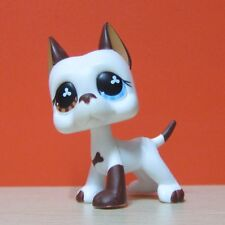 Littlest Pet Shop Collection LPS #577 White Brown Great Dane Dog Toys D1