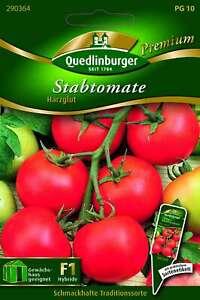 Saatgut - Samen Tomaten Stab- Harzglut 290364 Quedlinburger AR5453