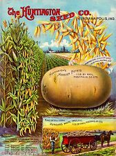 Huntington Potato Vintage Vegetable Seed Packet Catalogue Advertisement Poster
