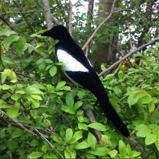 1PC Flocked Magpie Bird Decoy Full Body Trap Rook Shooting Hunting With Stake
