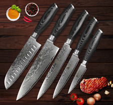 5Pcs Knife Set Kitchen Knives Damascus Steel 67 Layers Lasting Sharp Blade Wood