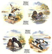 "Ducks Marsh Lake Set of 4 pcs 7-1/2"" Waterslide Ceramic Decals Xx"