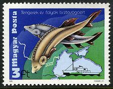 """Hungary 2599, MNH. Sturgeons, Map of Danube, """"Calypso"""", 1979"""