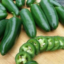 Jalapeno Pepper Seeds - 25 seeds