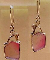 Watermelon Tourmaline Slice 9.00ct Kidney Wire 14k Solid Gold Earrings skaisAP18