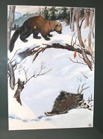 vintage original Jacob Bates Abbott nature wilderness illustration painting art