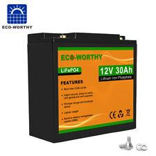 Light 12V 30Ah 360Wh Li-Iron Lithium Iron Phosphate Battery LiFePo4 Built-in BMS