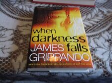 Jack Swyteck Novel: When Darkness Falls Bk. 6 by James Grippando (2007, Hardcove