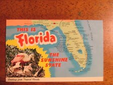Postcard, This is Florida, The sunshine State -Greeting from Tropical Florida