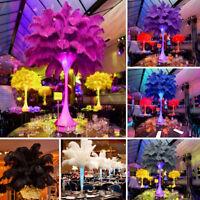 10× Plumes d'autruche Plume Centre mariage décoration Table 30-35 cm creation G