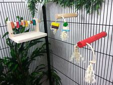Set of Play Perches & Wood Gnaw Shelf for parrots, dangling toys - Amazon,Grey