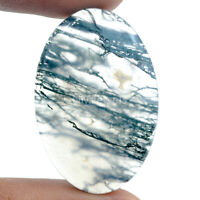 Cts. 37.15 Natural Rare Landscape Moss Agate Cabochon Oval Cab Loose Gemstone