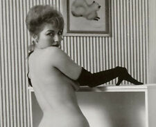 Vintage Erotica ~ Pin-Ups, Burlesque and Erotic Photos on Disk!