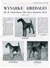 AIREDALE TERRIER DOG WYNARKE KENNEL BREED ADVERT PRINT PAGE OUR DOGS 1949