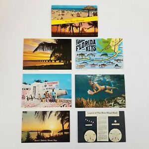 Vtg Florida Keys Postcards Lot of 7 Ocean Beach Shells Sunset Palm Tree