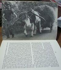 La fin des culs-terreux, Maurice Bidaux, odyssée paysanne, World FREE Shipping*