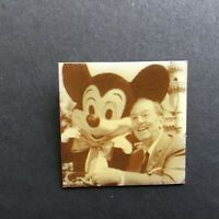 DLR Cast Member Earned Your Ears - Walt and Mickey Mouse Disney Pin 58516