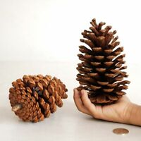 Pine Cone Decor For Christmas Tree Xmas Party Decoration Huge Hanging Ball 15CM