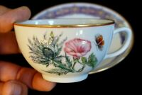 Beautiful Mottahedeh Merian Cup And Saucer