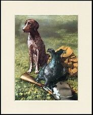 GERMAN SHORTHAIRED POINTER WITH GUN AND GAME DOG PRINT MOUNTED READY TO FRAME