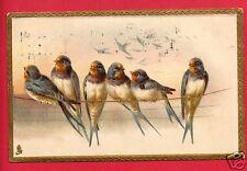 BLUE BIRDS ON TELEPHONE ELECTRIC LINE  TUCK 1908 VARVEL SPRINGFIELD OH  POSTCARD