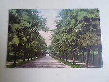 Vintage Postcard Norfolk Park Avenue, Sheffield Franked+Stamped 1905   §A1477