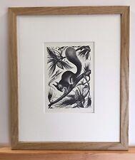 Agnes Miller-Parker-ORIGINAL ANNÉES 1930 écureuil Imprimer mounted & framed