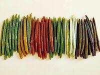 "50 pk 5"" Senko style Soft Plastic Bass Worms - 5 COLORS/10 EACH - ""Green"" Multi"