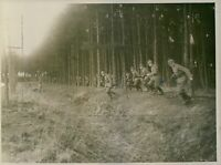 German soldiers in the Forest of Argonne during WW1 - 8x10 photo