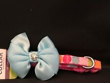 Multicollored dot  pink and aqua colored collar  for the xx small dog