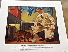 Medical Art-Harvard Medical School  Vintage Ltd Ed  Unsigned 16x13