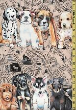 PUPPY DOGS NEWSPAPER Torn Paper Michael Miller OOP 100% Cotton Fabric BTHY