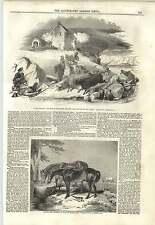 1843 The Raid Of The Reiver A Cooper Wesleyan Centenary Hall Bishopsgate
