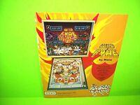 Stern WILD FYRE Original 1978 Flipper Game Pinball Machine Flyer 2-Sided Version