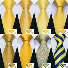 Mens Ties Set Necktie Silk Gold Yellow Blue Paisley Solid Striped Floral Tie
