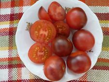 Schwarz Rote  Party Tomaten auch  für  Balkon   20 +Stück Saatgut
