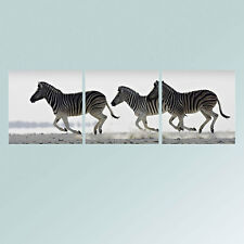 Canvas Print Photo Paintings Pictures Posters Wall Art Decor Zebra Horses Framed