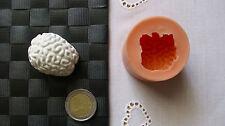 3D Silikon Backform Gehirn Hirn / Halloween / Marzipan / Tortendekoration / Fimo