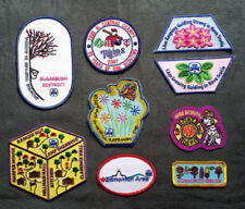 Scouts/Guides 2000 to Present Decade Collectable Badges