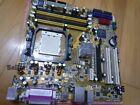 ASUSTeK COMPUTER M2NPV-VM, AM2+, AMD Motherboard